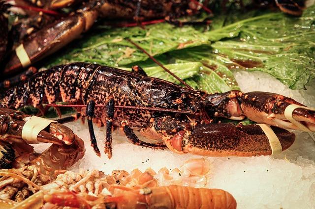 lobster-428059_640