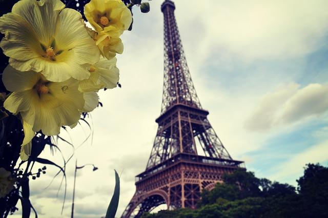 paris flor