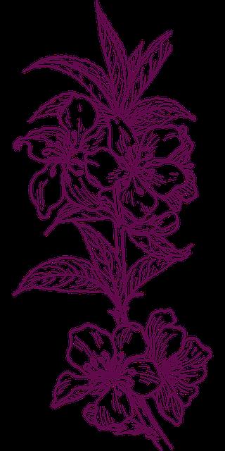 flower-303530_640