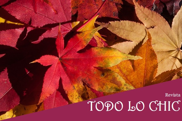 portada otoño