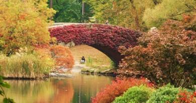 Central-Park-en-Nueva-York-Bonitos-colores-otonales