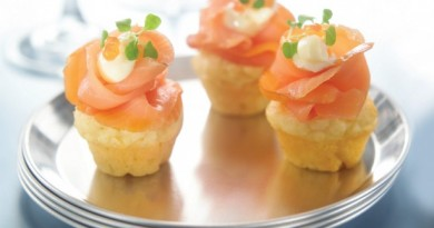 cupcacke-salmon
