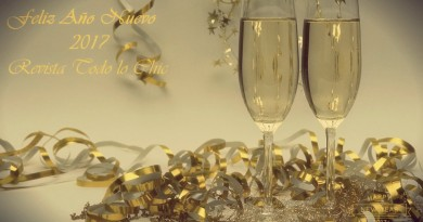 ano-nuevo-revista-todo-lo-chic2