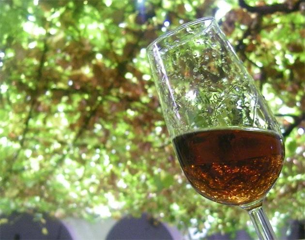 El delicioso vino Moscatel, francamente maravilloso !