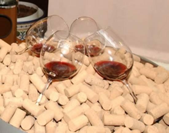 vino-vino2