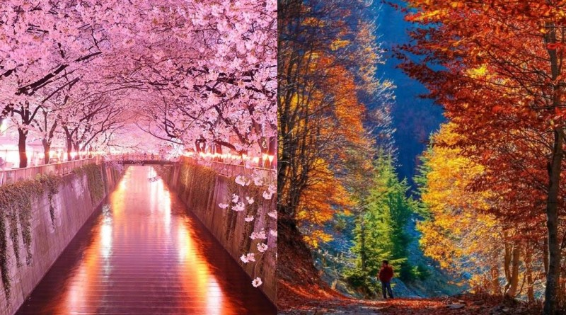 Primavera y otoño