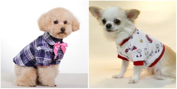 ropa de mascotas 1