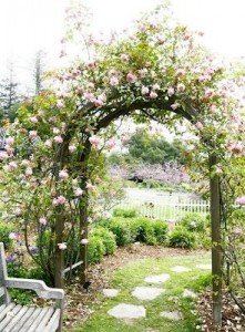 arcos flores 4