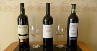vinos-tannat-uruguay-5(1)