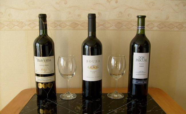 Los vinos de Uruguay, deliciosos y de gran calidad