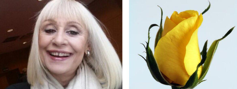 Flores amarillas para despedir a Raffaella Carrà